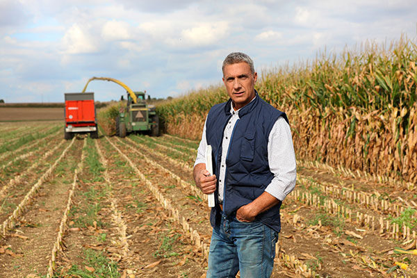 Commercial or Agricultural Lines of Credit