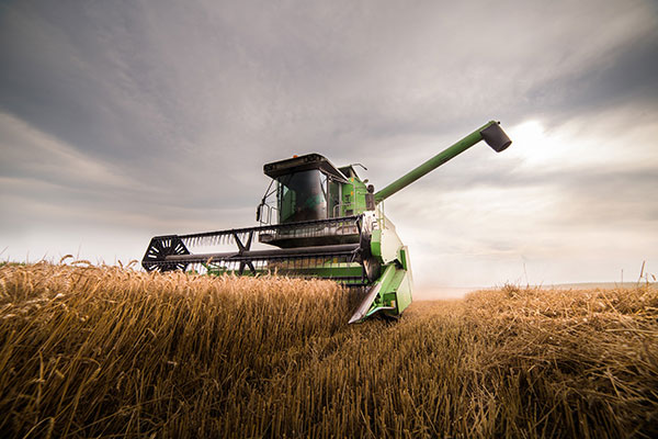Commerical or Agricultural Term Loans